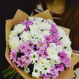 Большой букет белых и розовых хризантем
