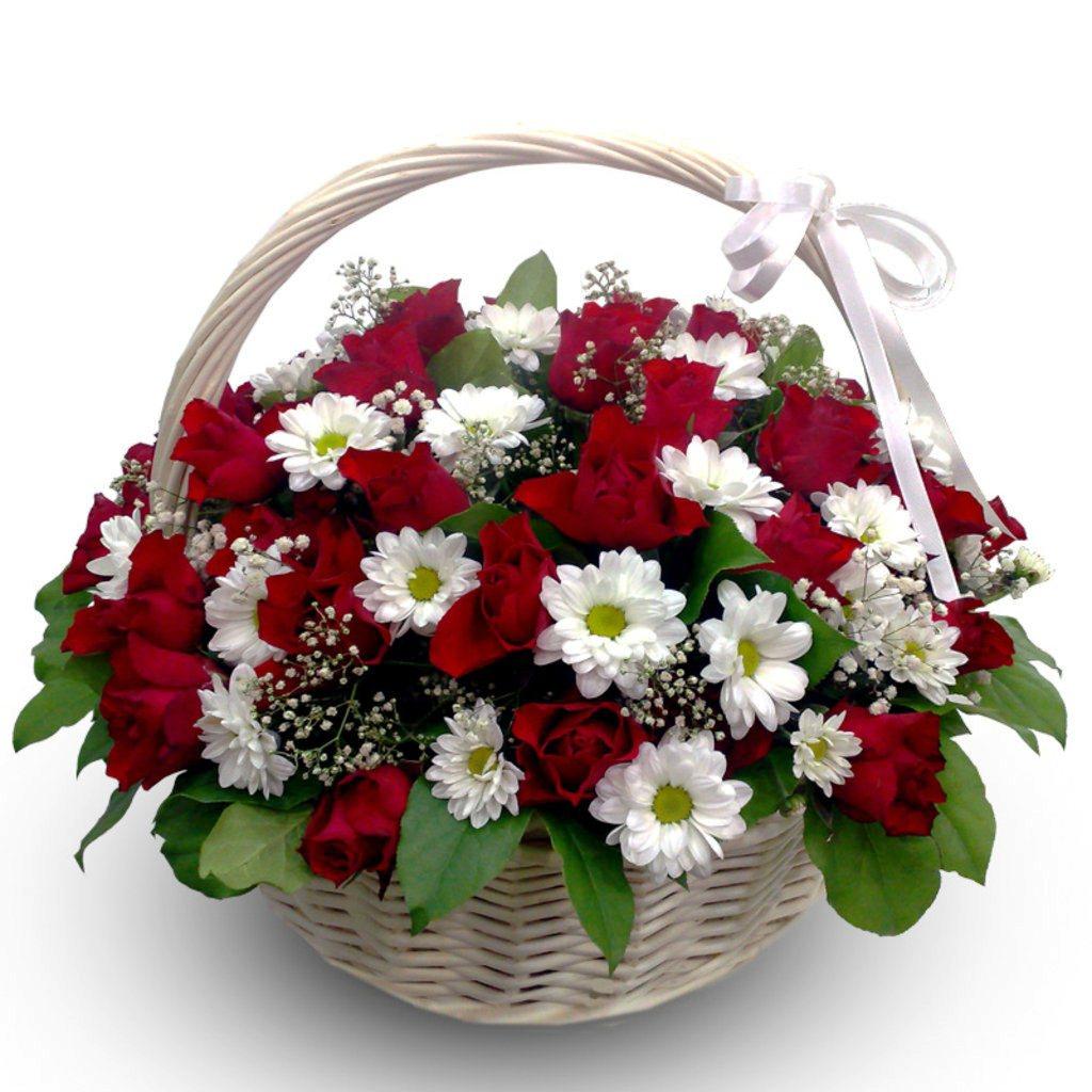 различаются между цветы с корзинами картинки того