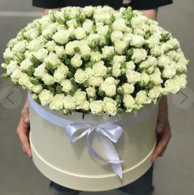 101 белая кустовая роза в шляпной коробке