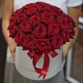 Большая коробка бордовых роз